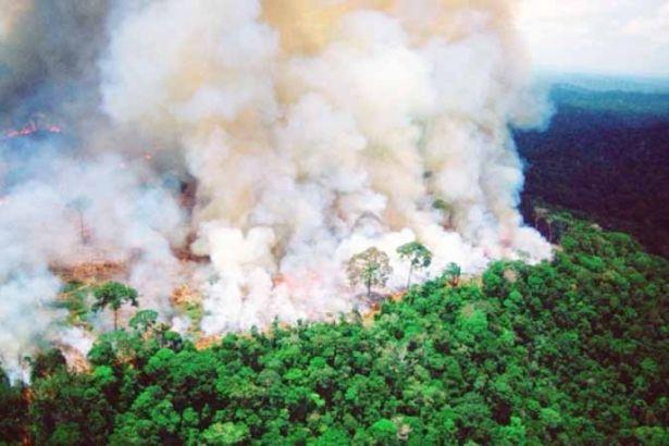 Amazonlar'daki yangın da seyrediliyor